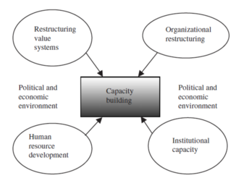 Capacity Building Graphic